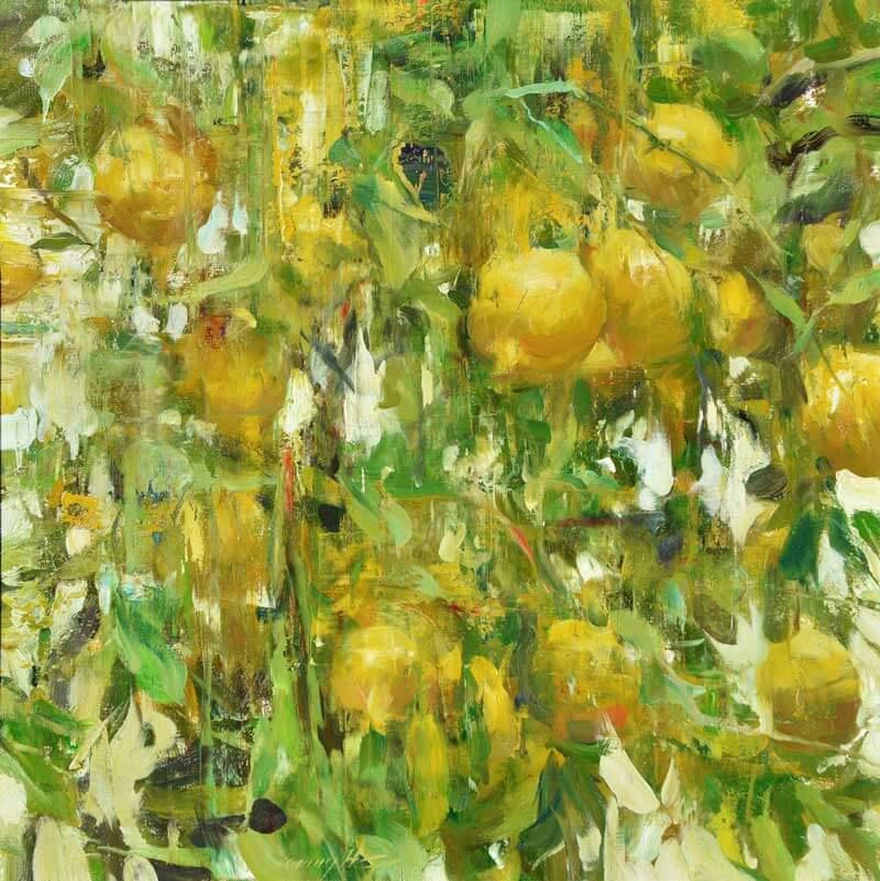 Lemon Trees, Quang Ho