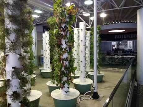 Aeroponic Garden