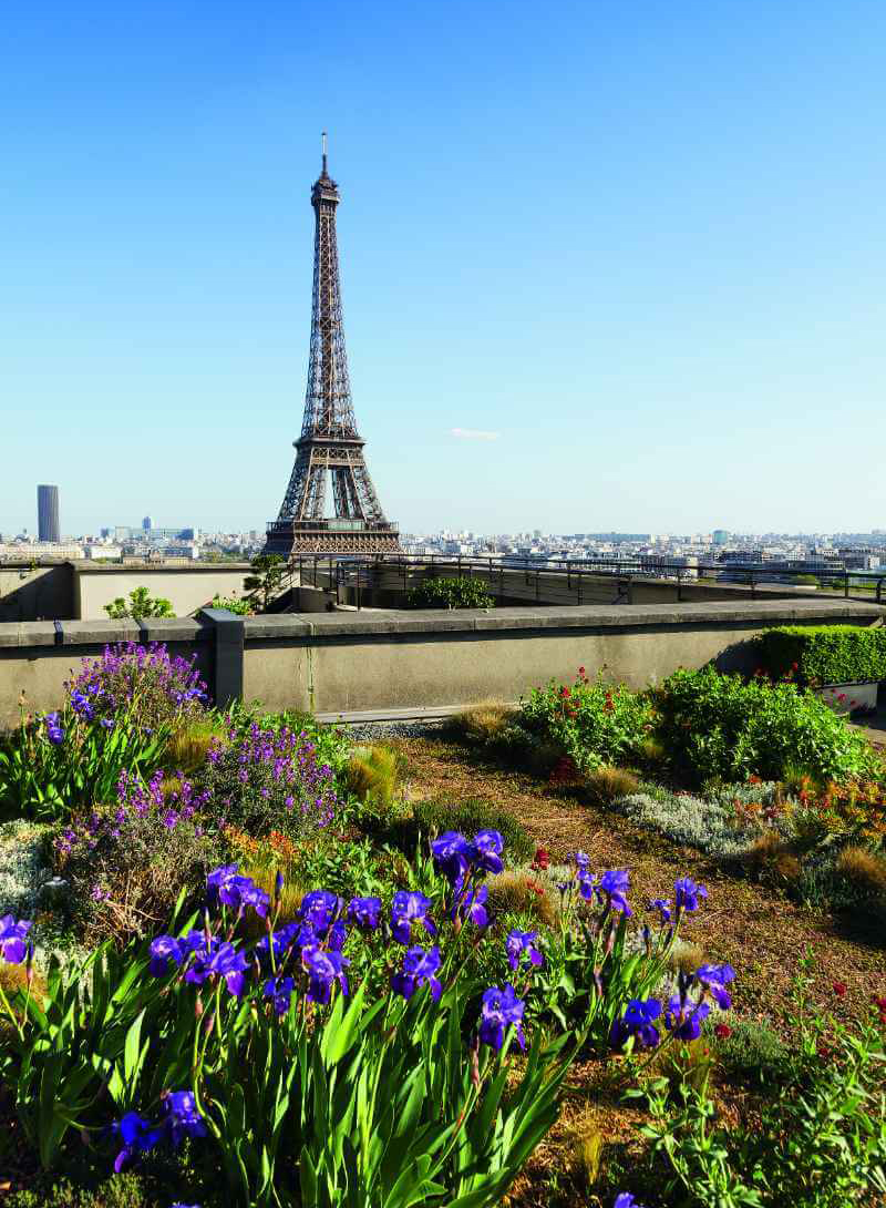 Rooftop Garden Overlooking the Eiffel Tower