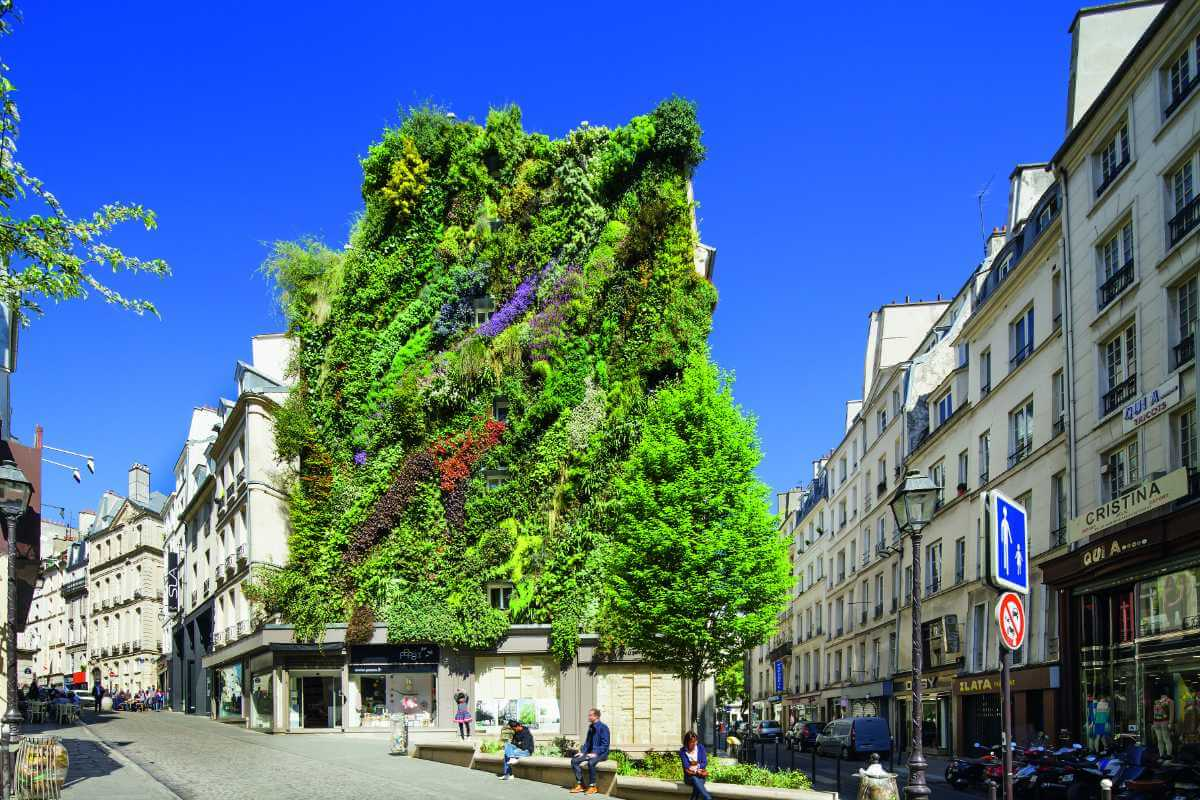 Green wall, Paris