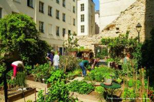 Potager des Oiseaux (vegetable garden)